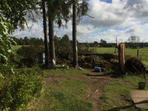 Talgud 11.08.2017, tormi kahjustuste koristamine